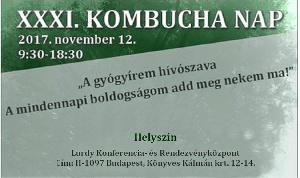 Kovács-Magyar András a XXXI. Kombucha napon – 2017.11.12. vasárnap